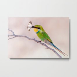Bee-eater with Butterfly Metal Print