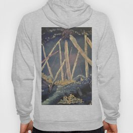 The Healing Crystal cave Hoody