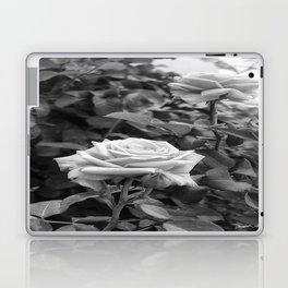 Pink Roses in Anzures 5 B&W Laptop & iPad Skin