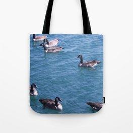 Ducks, Mallard Ducks, Lake Michigan Tote Bag