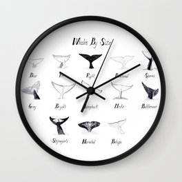Whales - By Size Wall Clock