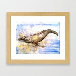 Gloucester Humpback Whale Framed Art Print