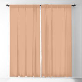 From The Crayon Box – Tumbleweed - Light Brown Solid Color Blackout Curtain