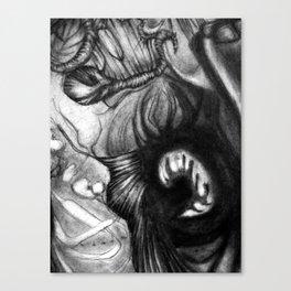 DN001 - Detail 2 Canvas Print