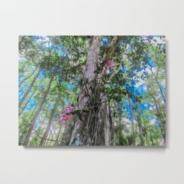 Orchids in the Tree Metal Print