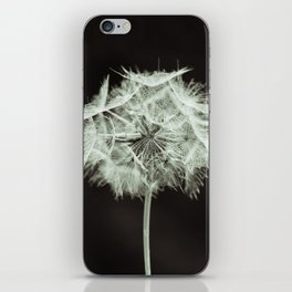 Gone to Seed iPhone Skin