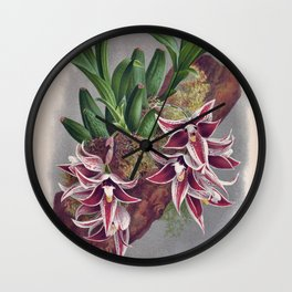 Paphinia Lindeniana Vintage Wine Orchids In A Log Wall Clock