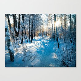 Beautiful sunrise in the forest Canvas Print