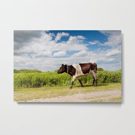 Calf walking in natural landscape Metal Print