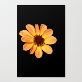 Dahlia Orange and Yellow Canvas Print