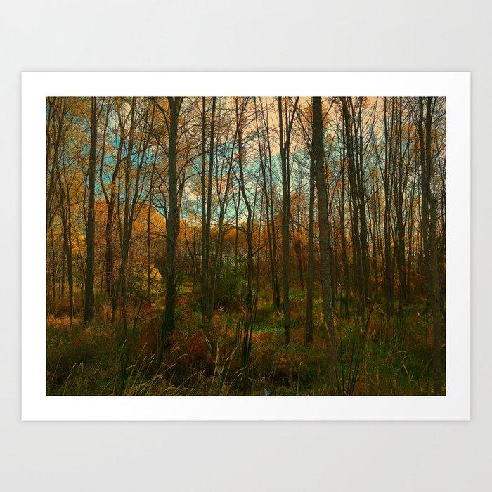 Fall Encroachment Art Print