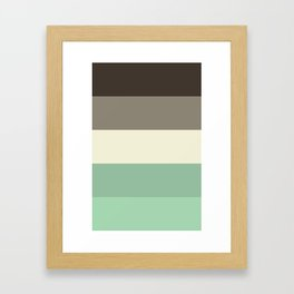 color stripes Framed Art Print