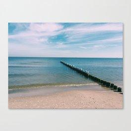 seagulls, water, beach Canvas Print