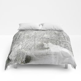 celsius Comforters