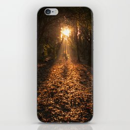 Autumn Fantasy : Let the Light Guide You iPhone Skin