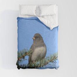 Backyard Beauty Comforters