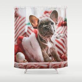 Sweet bulldog Shower Curtain