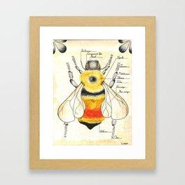 Bombus rufocinctus Framed Art Print