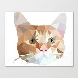 Cubic Cat Canvas Print