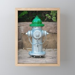 Super Centurion in Sliver and Green Fire Hydrant Fire Plub Framed Mini Art Print