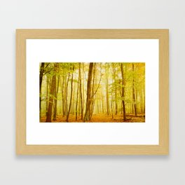 autumn scenery Framed Art Print