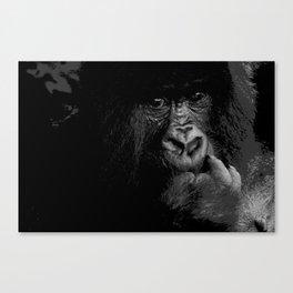 Silver Back Canvas Print