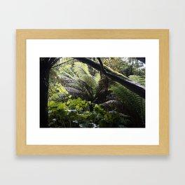 Rainforest in Cornwall Framed Art Print