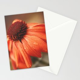 After a summer storm Stationery Cards