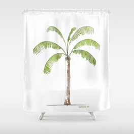 Palm tree-01 Shower Curtain