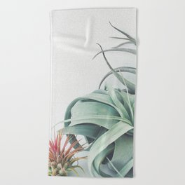 Air Plant Collection Beach Towel