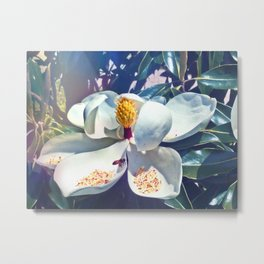 Magnolia Blossom and Bee Metal Print