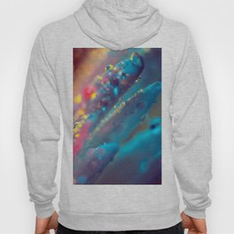 Electric Blue Floral Dew   Hoody