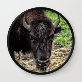 The Bison Stare Wall Clock