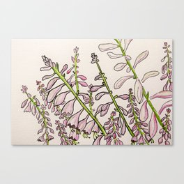 Blooming marvelous Canvas Print
