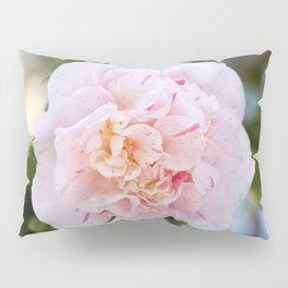 Strawberry Blonde Camellia in Bloom Pillow Sham