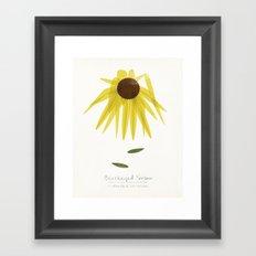 Blackeyed Susan Modern Botanical Framed Art Print