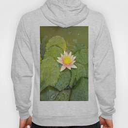 Lily-Livered Scoundrel Hoody