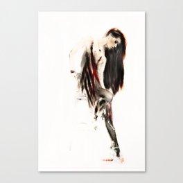 Aspect Canvas Print