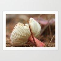 mushroom Art Prints featuring Mushroom by The Botanist's Daughter