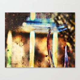 A Single Wish Canvas Print