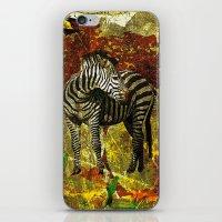 zebra iPhone & iPod Skins featuring Zebra by Saundra Myles