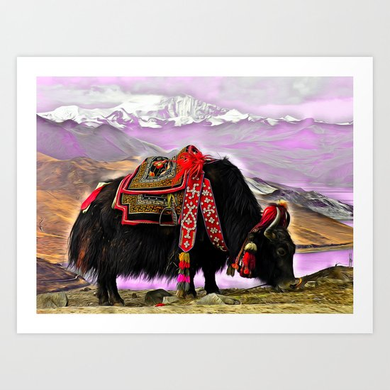 Tibetan Yak Art Print