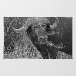 Buffalo in Black & White Rug
