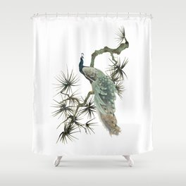 Turquoise Peacock Shower Curtain