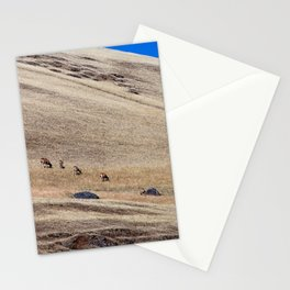 in the wild Stationery Cards