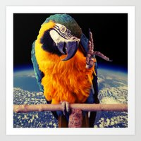 parrot Art Prints featuring Parrot by Cs025