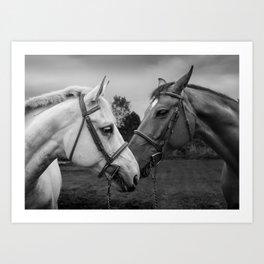 Horses of Instagram II Art Print