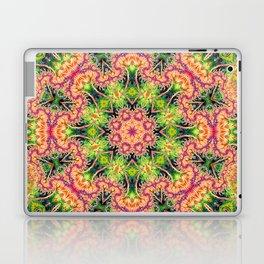 BBQSHOES: Kaleioscopic Fractal Mandala 1543K2 Laptop & iPad Skin