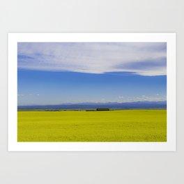 Canola Landscape Art Print