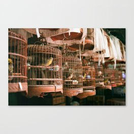 Bird Market analog Canvas Print